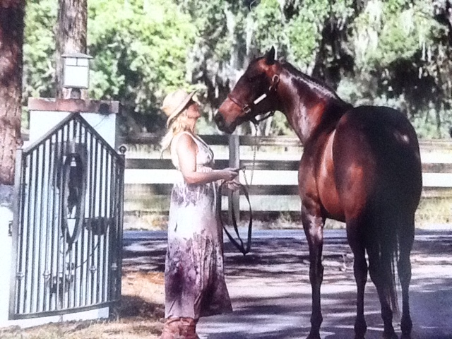 Ocala Farm Tours at chasin a dream